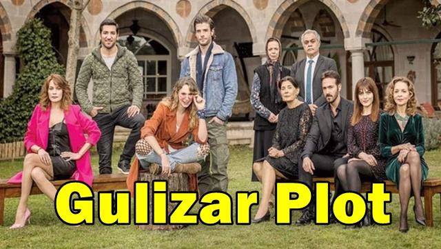 Gulizar Plot